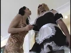Shock Collar Around His Balls - Husband Domestication Toys
